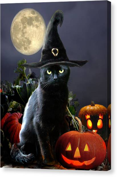 Full Moon Canvas Print - Witchy Black Halloween Cat by Regina Femrite