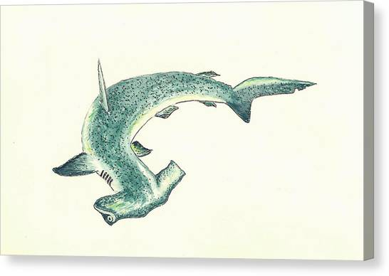 Sharks Canvas Print - Hammerhead Shark by Michael Vigliotti