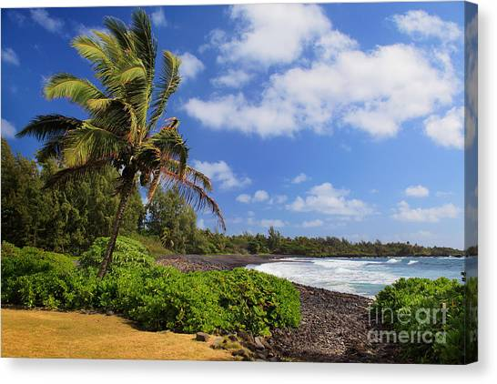 Splashy Canvas Print - Hana Beach by Inge Johnsson