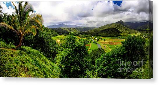 Hanalei Valley Canvas Print