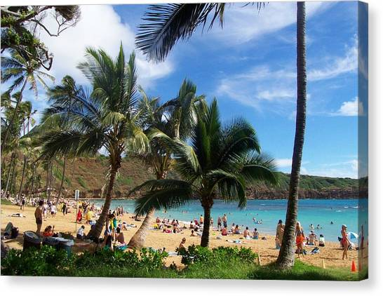 Hanauma Bay Beach Canvas Print