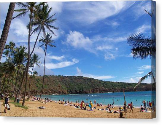 Hanauma Bay Oahu Hawaii Canvas Print