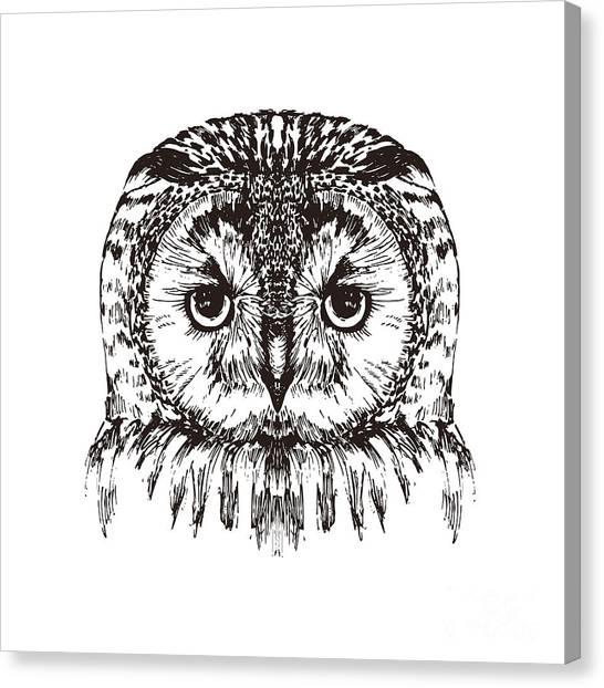 Zoo Canvas Print - Hand Drawn Owl Portrait, Vector by Melek8