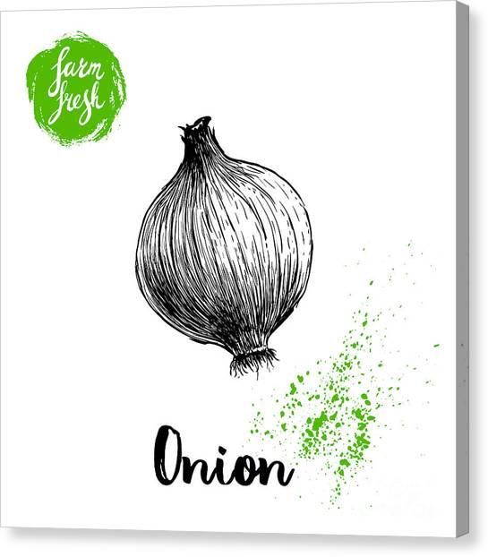 Old Masters Canvas Print - Hand Drawn Sketch Onion. Farm Fresh by Sketch Master