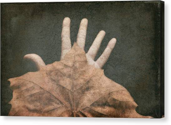 Hand Of Nature Canvas Print