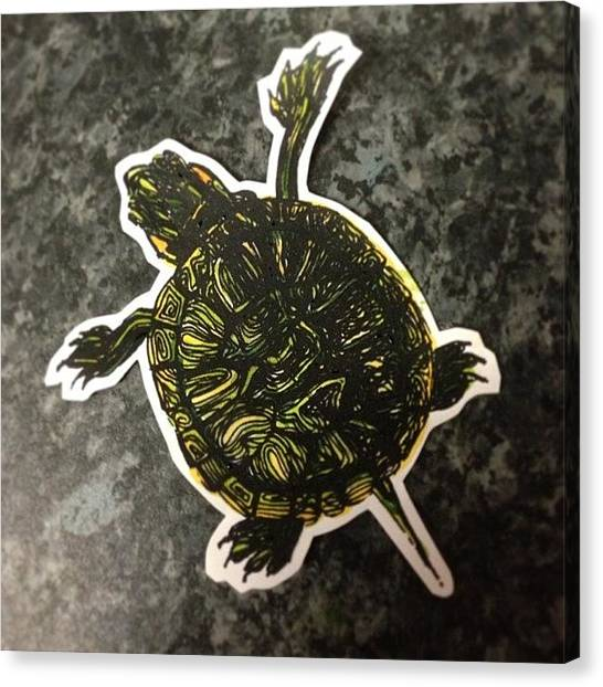 Tortoises Canvas Print - Handmade, Individually Hand Painted by Siobhan Bevans