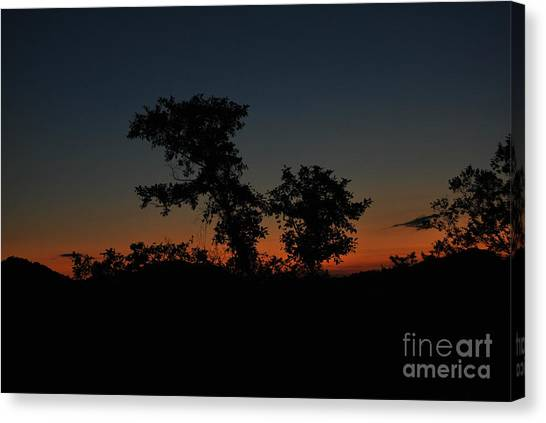 Sense Of Freedom Canvas Print
