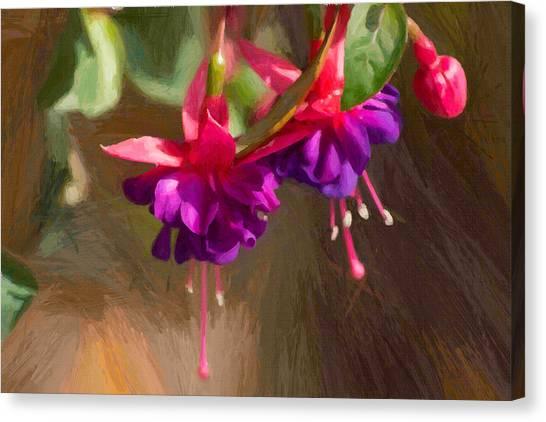 Hanging Flower Basket Canvas Print