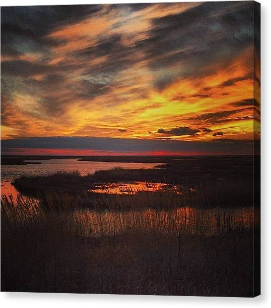 Marshes Canvas Print - Happens Everyday by Katie Cupcakes