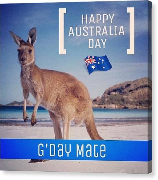 Kangaroo Canvas Print - Happy Australia Day.. G'day Mate by Shamoon Sabig