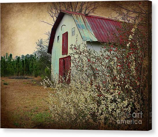 Happy Barn In Spring Canvas Print by Lorraine Heath