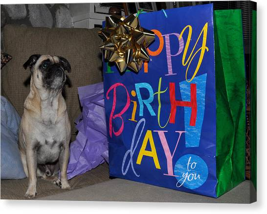 Happy Birthday Pug Canvas Print By Diane Lent