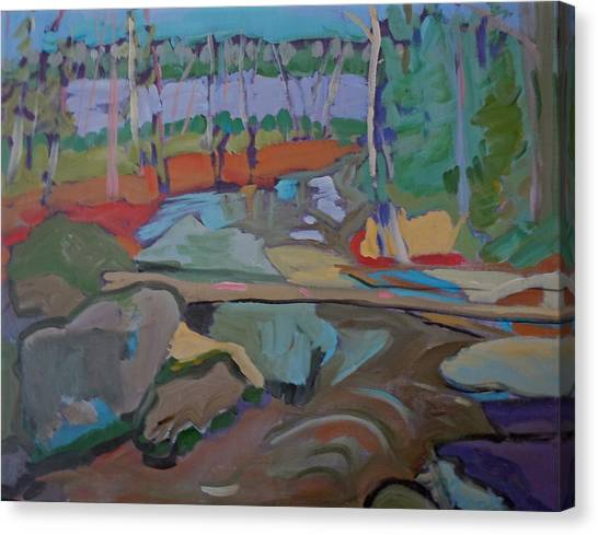 Happy Brook  Canvas Print