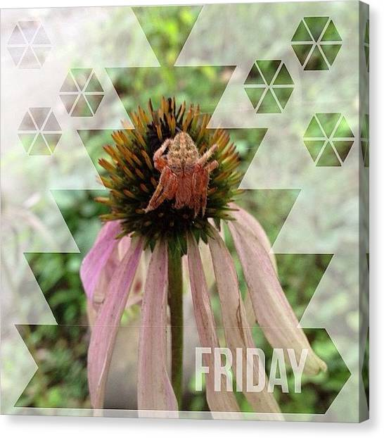 Gardens Canvas Print - #happy #friday Everyone!  Found This by Teresa Mucha
