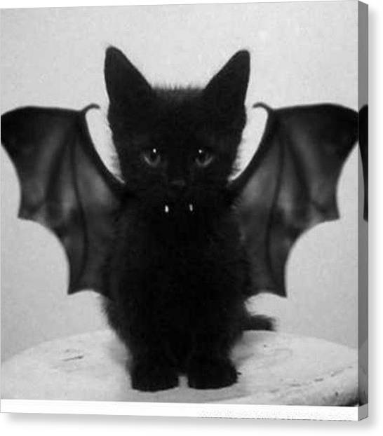 Bat Canvas Print - Happy Halloween? ... Yeah, Right Can I by Agnieszka Antonina Golba
