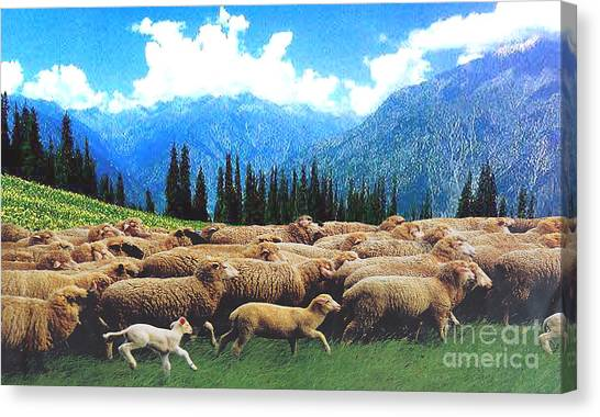 Happy Journey... Canvas Print