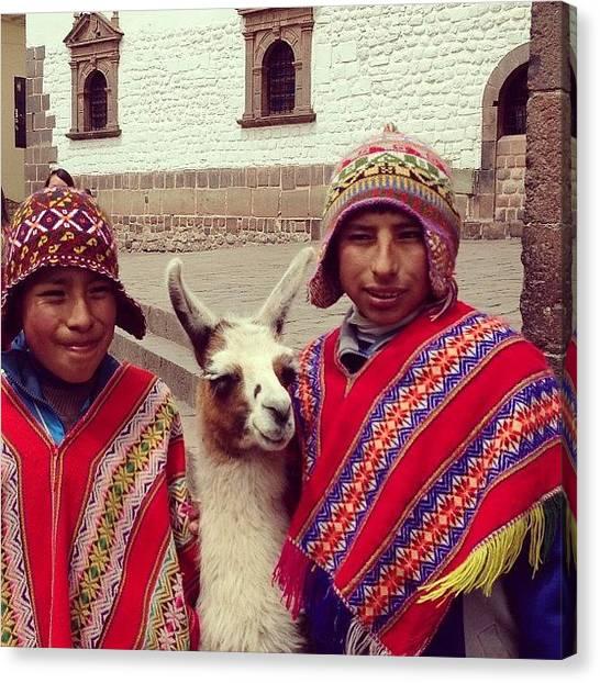 Llamas Canvas Print - Happy Monday! #cusco #peru #cute #boys by Blogatrixx