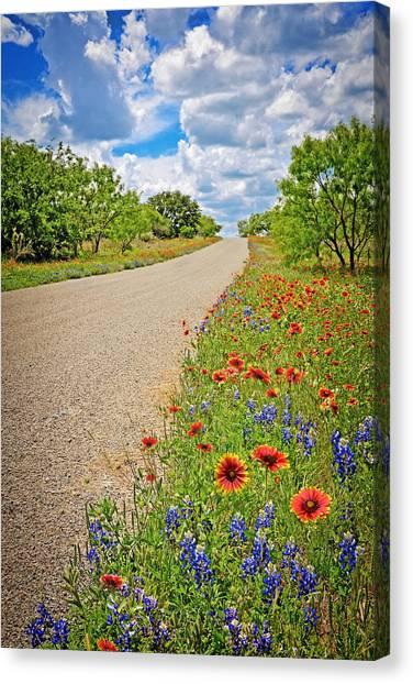 Happy Road Canvas Print