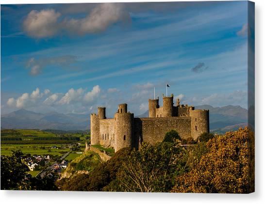 Harlech Castle Canvas Print by David Ross