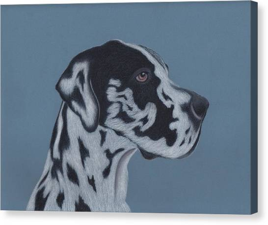 Great Danes Canvas Print - Harlequin Great Dane by Sesh Artwork