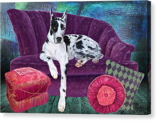 Harlequin Haven Canvas Print