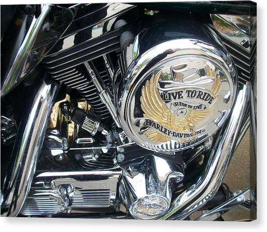 Harley Live To Ride Canvas Print