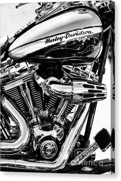 Hogs Canvas Print - Harley Monochrome by Tim Gainey