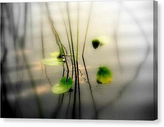 Seagrass Canvas Print - Harmony Zen Photography II by Susanne Van Hulst