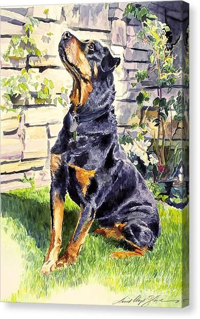 Purebred Canvas Print - Harry The Doberman by David Lloyd Glover
