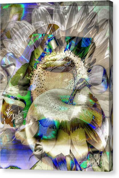 Canvas Print featuring the digital art Harvest by Eleni Mac Synodinos