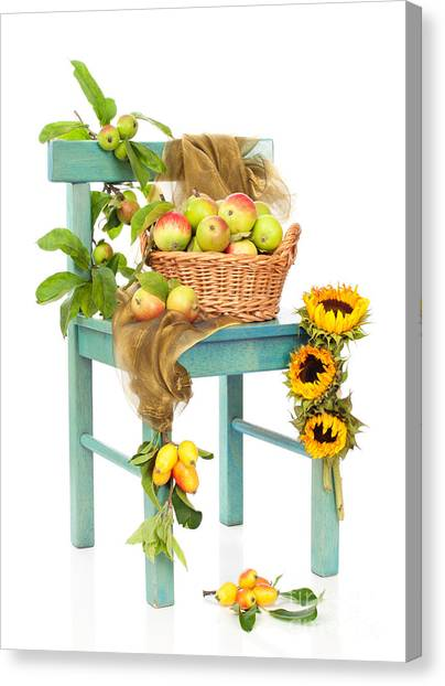 Wild Orchards Canvas Print - Harvest Fayre by Amanda Elwell