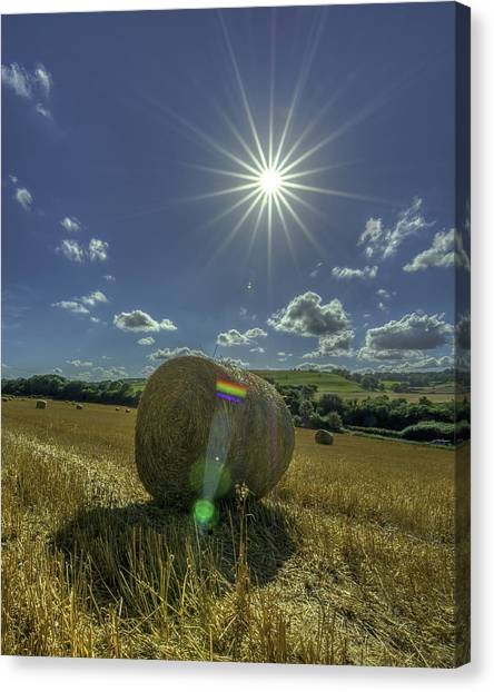 Harvest Sun Canvas Print