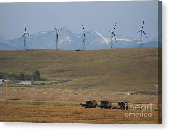 Canvas Print featuring the photograph Harvesting Wind And Grain by Ann E Robson