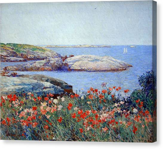 Hassam's Poppies On The Isles Of Shoals Canvas Print