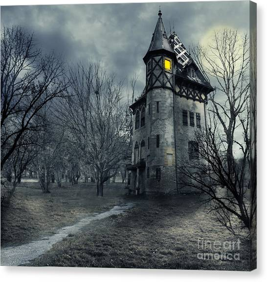 Bat Canvas Print - Haunted House by Jelena Jovanovic
