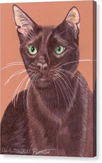 Havana Brown Vignette Canvas Print