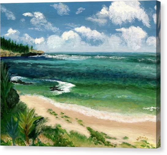 Hawaii Beach Canvas Print