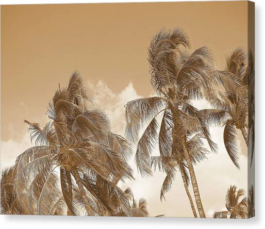 Hawaiian Breeze Canvas Print