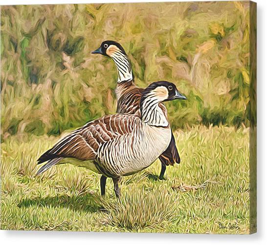 Hawaiian Goose Couple Canvas Print