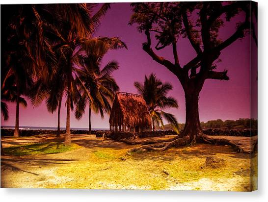 Hawaiian Jail Canvas Print