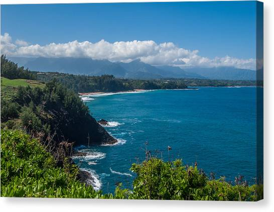 Hawaiian Paradise Canvas Print