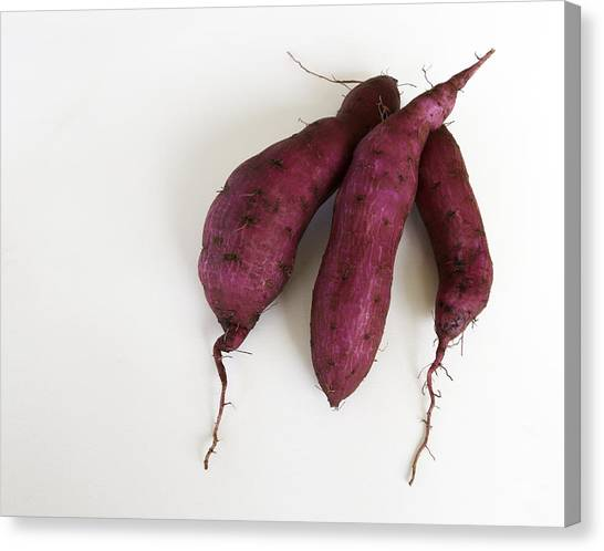Hawaiian Purple Sweet Potatos Canvas Print