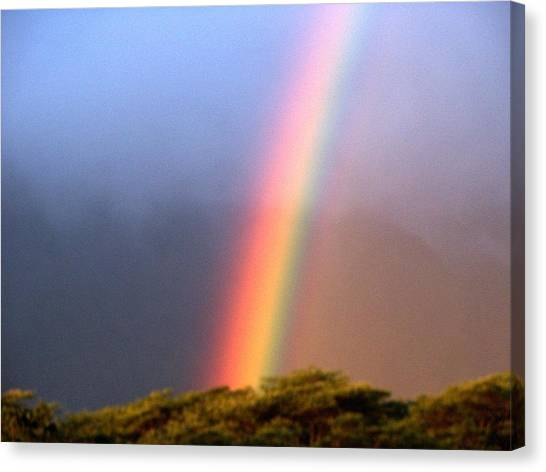 Hawaiian Rainbow Canvas Print