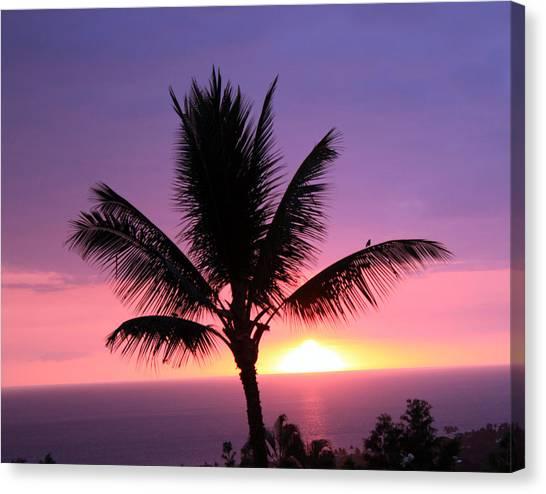 Hawaiian Sunset And Palm Canvas Print