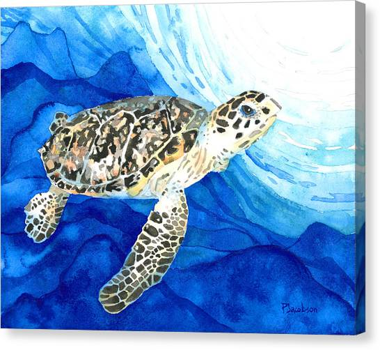 Hawksbill Sea Turtle 2 Canvas Print