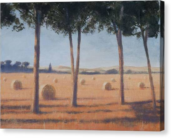 Hay Bales Canvas Print - Hay Bales And Pines, Pienza, 2012 Acrylic On Canvas by Lincoln Seligman