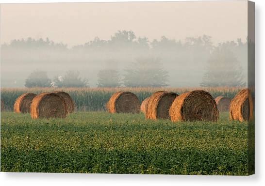 Haybales Canvas Print by Sarah Boyd