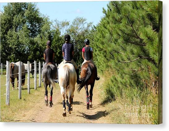 Heading To The Cross Country Course Canvas Print