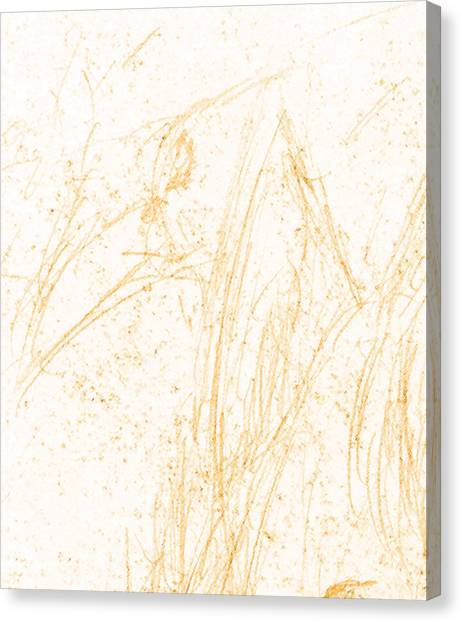 Simplistic Canvas Print - Heads Crauw by John Doe