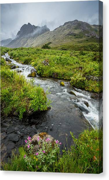 Headwaters In Summer Canvas Print